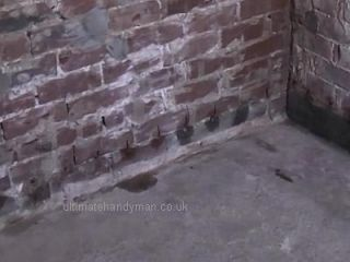 damp proofing cream, soaking in